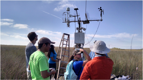 Eddy covariance equipment installed at Everglades National Park